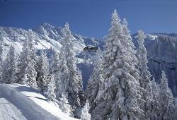 Skiurlaub in den berliner Winterferien im SportClub