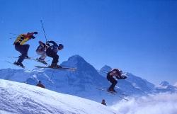 Olympische Disziplin Skicross