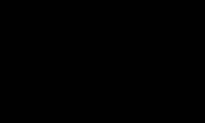 Bergbach (SAF2206)